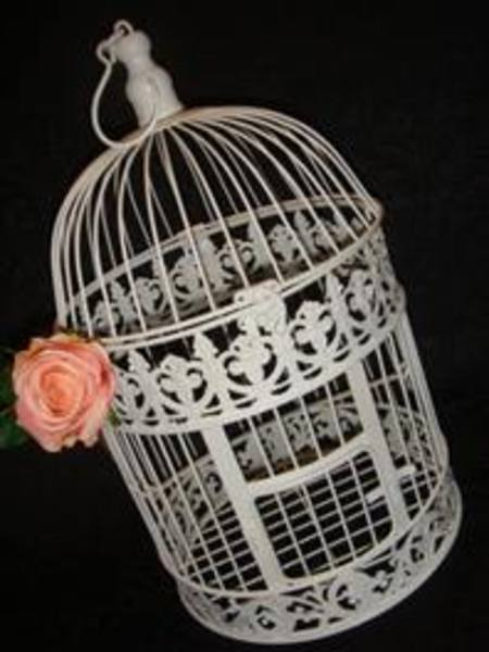 Buy Decorative Birdcage in NZ.
